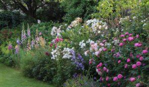 Lavori del mese di Giugno in giardino