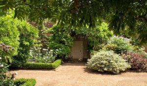 Cose da fare in giardino nel mese di Aprile
