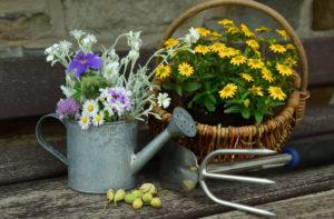 Trucchi di giardinaggio: gli attrezzi