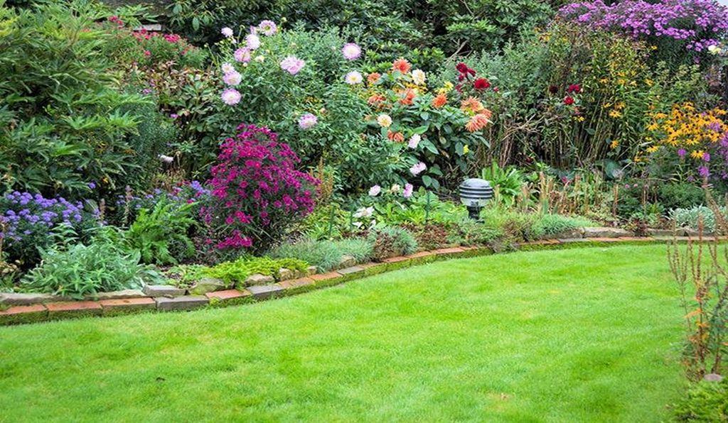 Read more about the article I lavori di settembre che favoriscono la ripresa vegetativa